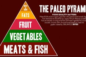 Mangiare troppa carne fa male anche secondo gli uomini primitivi