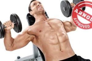 Accelerare il metabolismo con i muscoli?