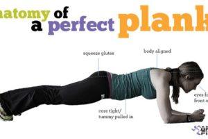 Addominali scolpiti con il plank