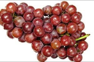 Dieta dell'uva? Ma anche no