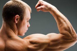 Protesi muscolari per polpacci e pettorali