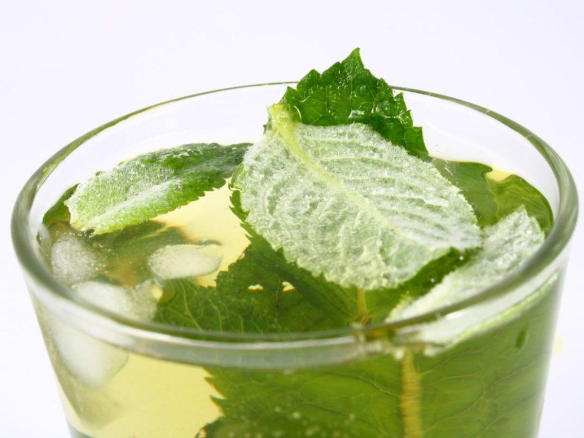 dr oz bere il tè verde che brucia grassi