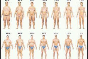 Quanta massa grassa hai?