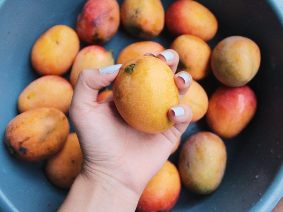 dieta alla papaia per perdere peso velocemente