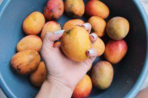 La dieta Pritikin per perdere 2 kg a settimana senza fame