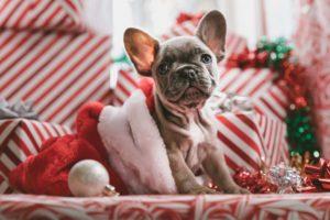 La dieta prenatalizia Christmas Countdown